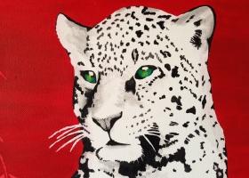 Leopard - ganz groß